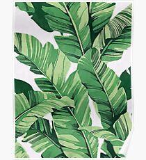 Tropical banana leaves III Poster
