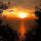 Red sunset on sea framed by foliage by gameover