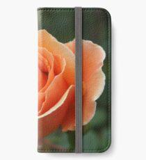 Tangerine Delight iPhone Wallet/Case/Skin