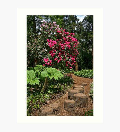 Riverside Gardens, Somerset Art Print