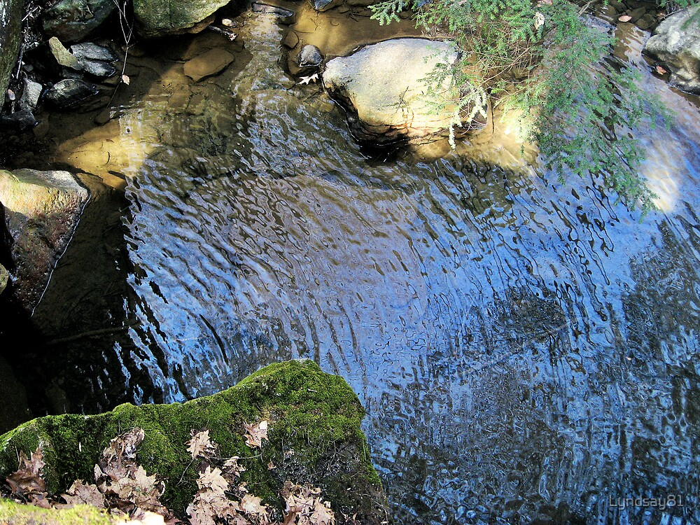 Ripples in the Water  by Lyndsay81