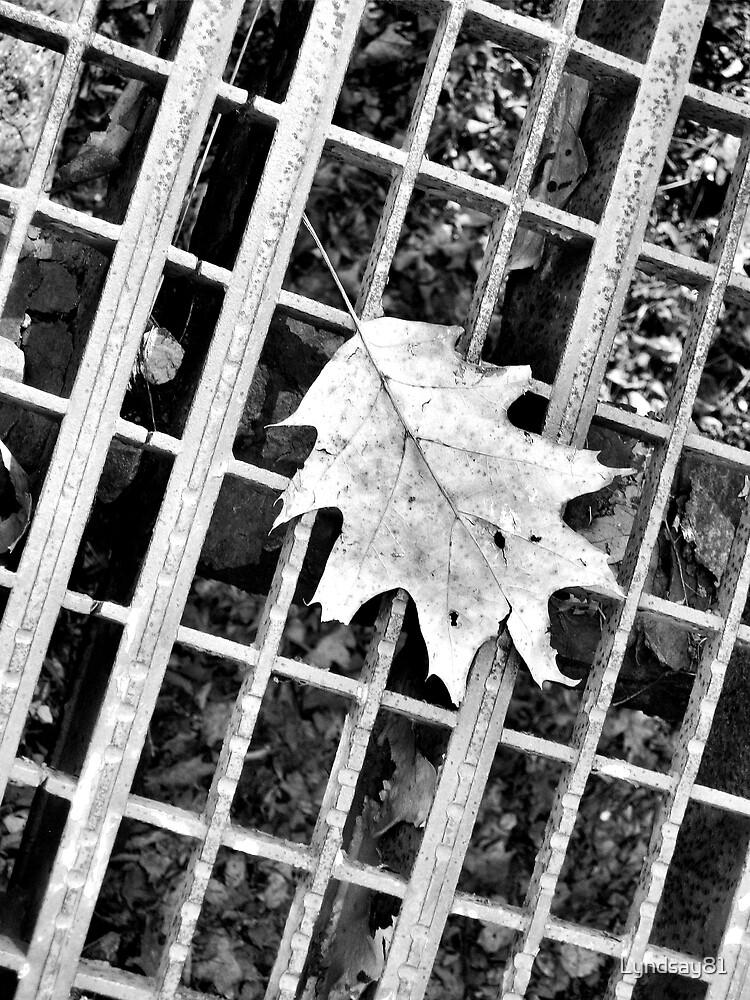 The Leaf by Lyndsay81