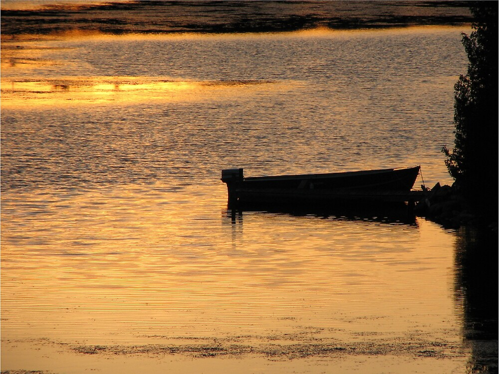 evening reflection by aathomas