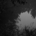 Of Dark Dreams ...  by Atraxura