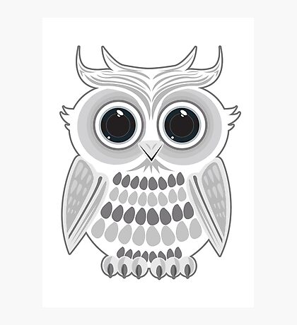 White Owl Photographic Print