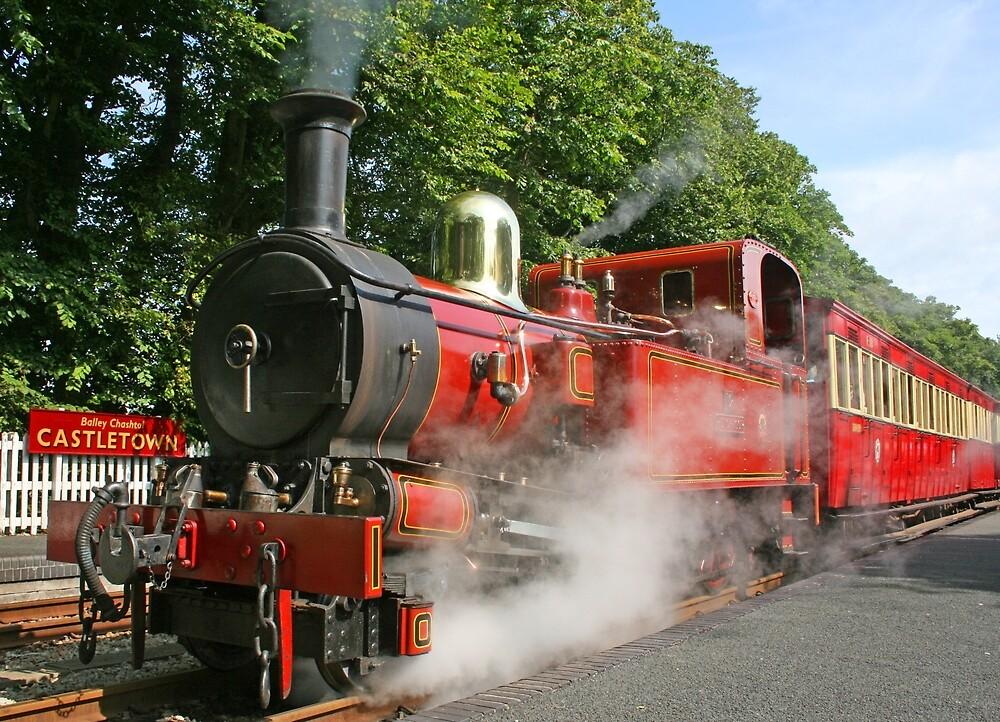 Hutch In Steam by RedHillDigital