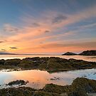 Seaweed and Sunrise by Robin Whalley