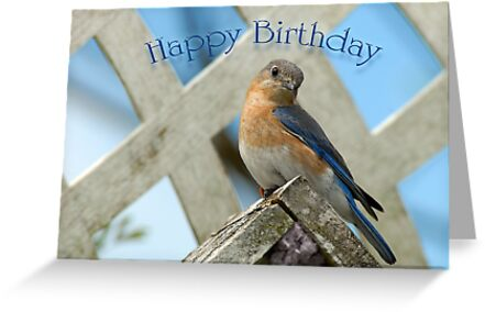 Happy birthday bluebird greeting cards by bonnie t barry redbubble happy birthday bluebird by bonnie t barry m4hsunfo