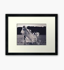 Ghost on Water Framed Print