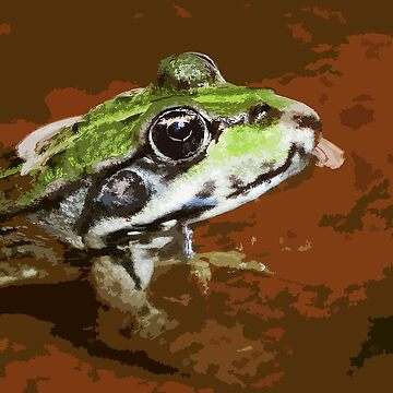 """""""Chives""""  The Star Frog summer in all its forms paint  11 (c(t) by Olao-Olavia / Okaio Créations fz   200 by caillaudolivier"""