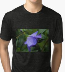 Beneath the Willow Tri-blend T-Shirt