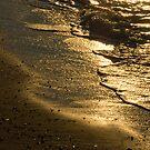 Sun Swept Sea Shore by toby snelgrove  IPA