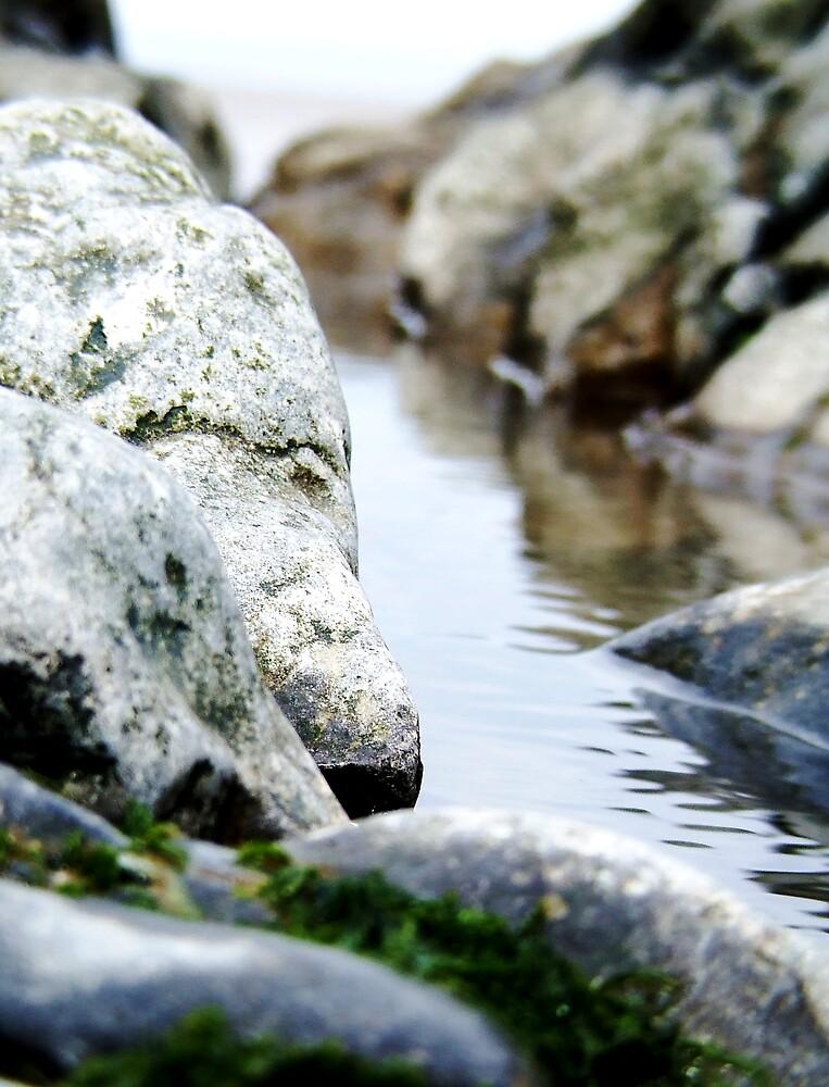 Rock Pool, Sand Bay by elmar rubio