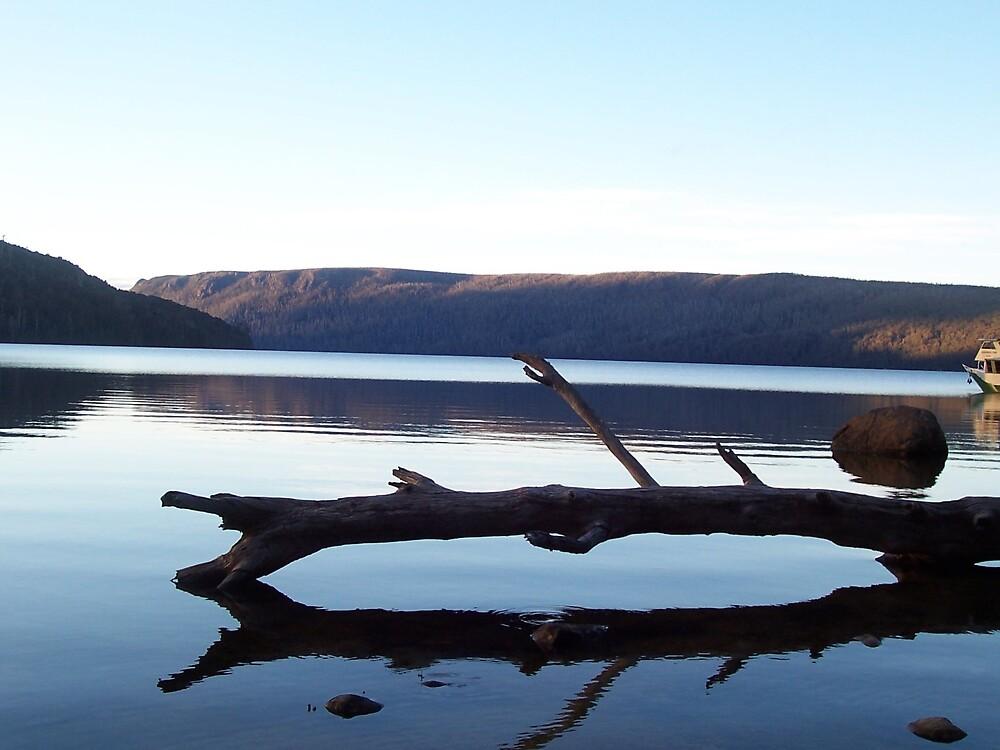 Log on lake at Lake St Clare by jade77green
