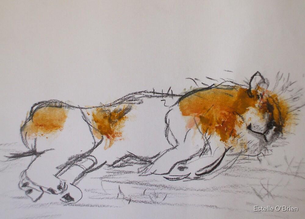 Lion Lying von Estelle O'Brien