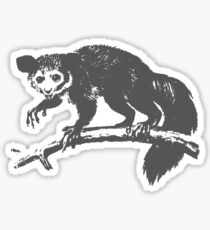 AYE-AYE Sticker