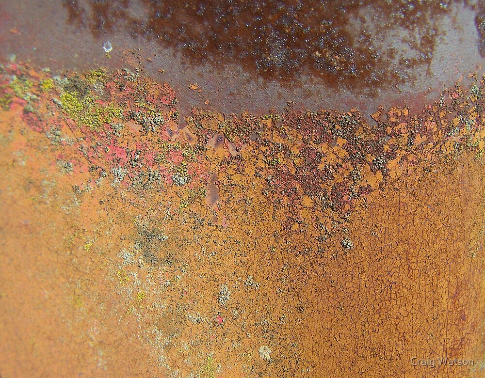 A Lichening for Rust by Craig Watson