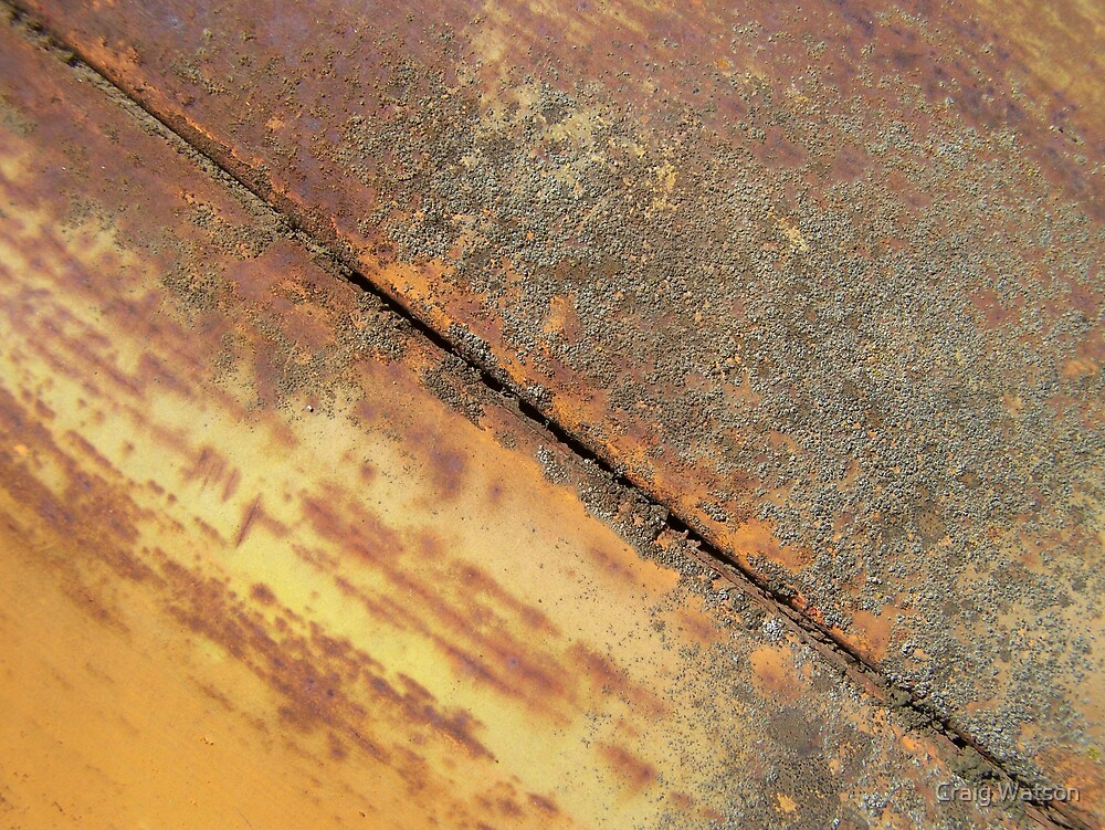 A Lick of Lichen by Craig Watson