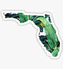 Florida Palm Leaves State Outline Sticker