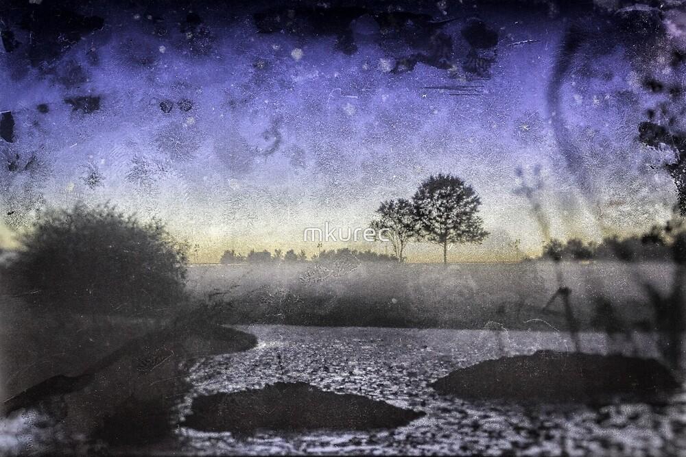 Great Meadows, VA by mkurec