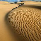 Quintessence of Wave by Anton Gorlin