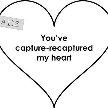Capture-recapture my heart by dataambassador