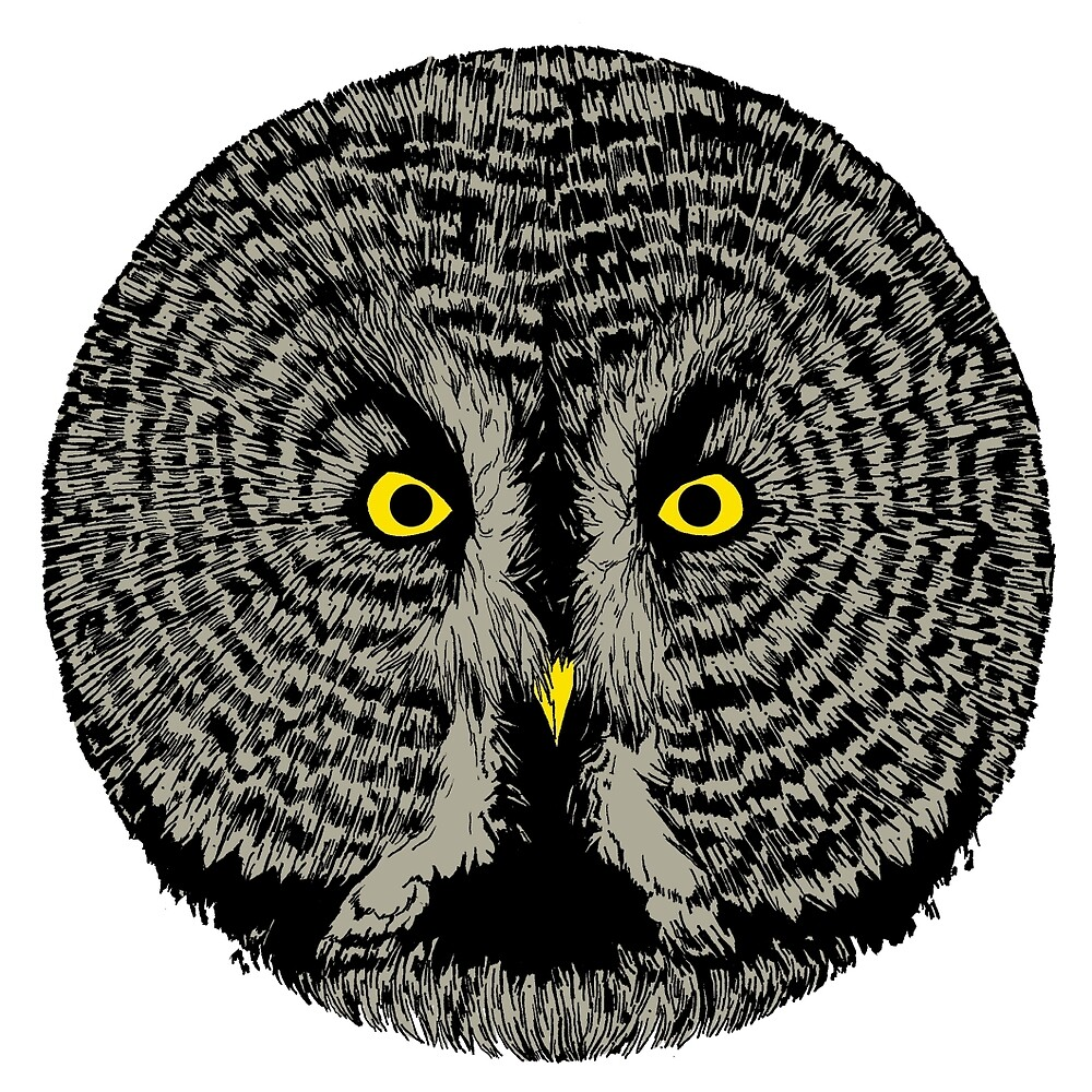 Round Owl by Sy Graham