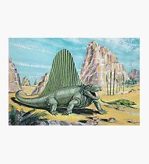Dimetrodon Photographic Print