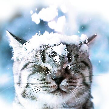 Snow Cat  by djjaap