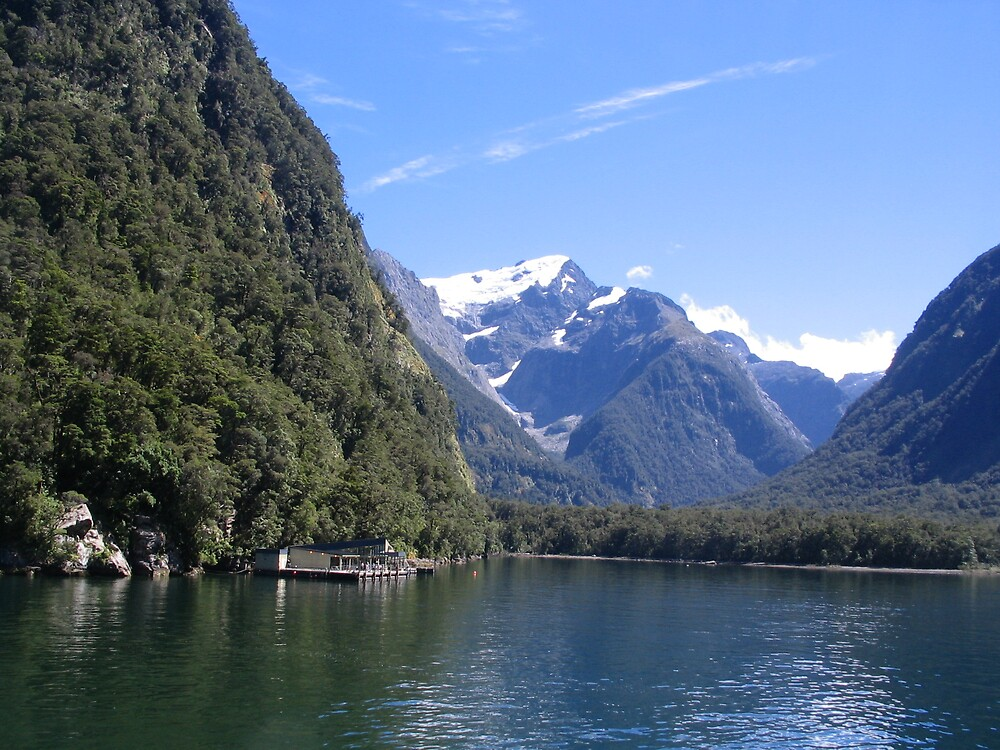 Milford Sound South Island New Zealand by Phil Barr