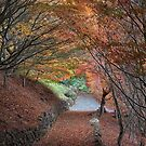 Under an Autumn Canopy by Karine Radcliffe