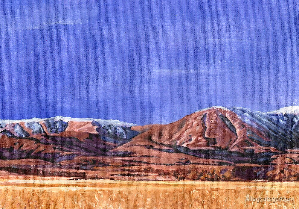 south island landscape (part 2) by Alleycatsgarden