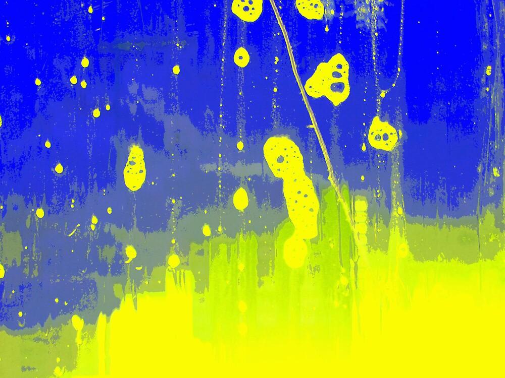 window cleaning 03 by dajen edelkoort