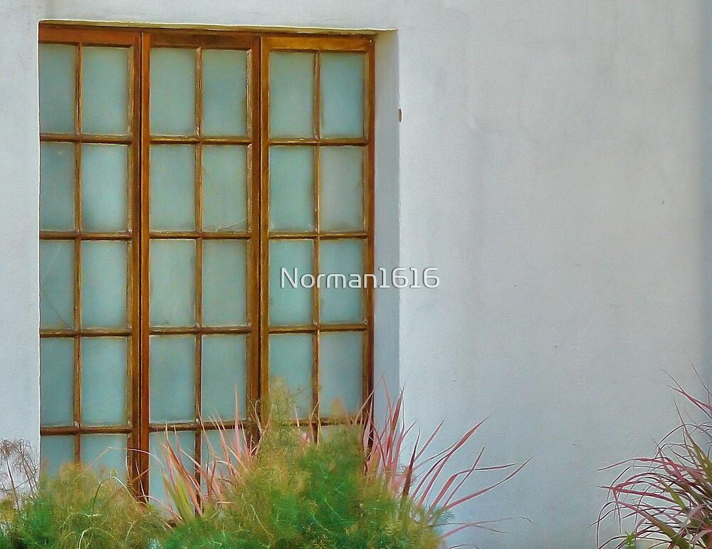 Window by Norman1616