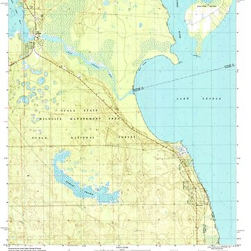 USGS TOPO Map Florida FL Salt Springs 348389 1994 24000 by wetdryvac