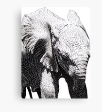 Cute Baby Elephant Canvas Print