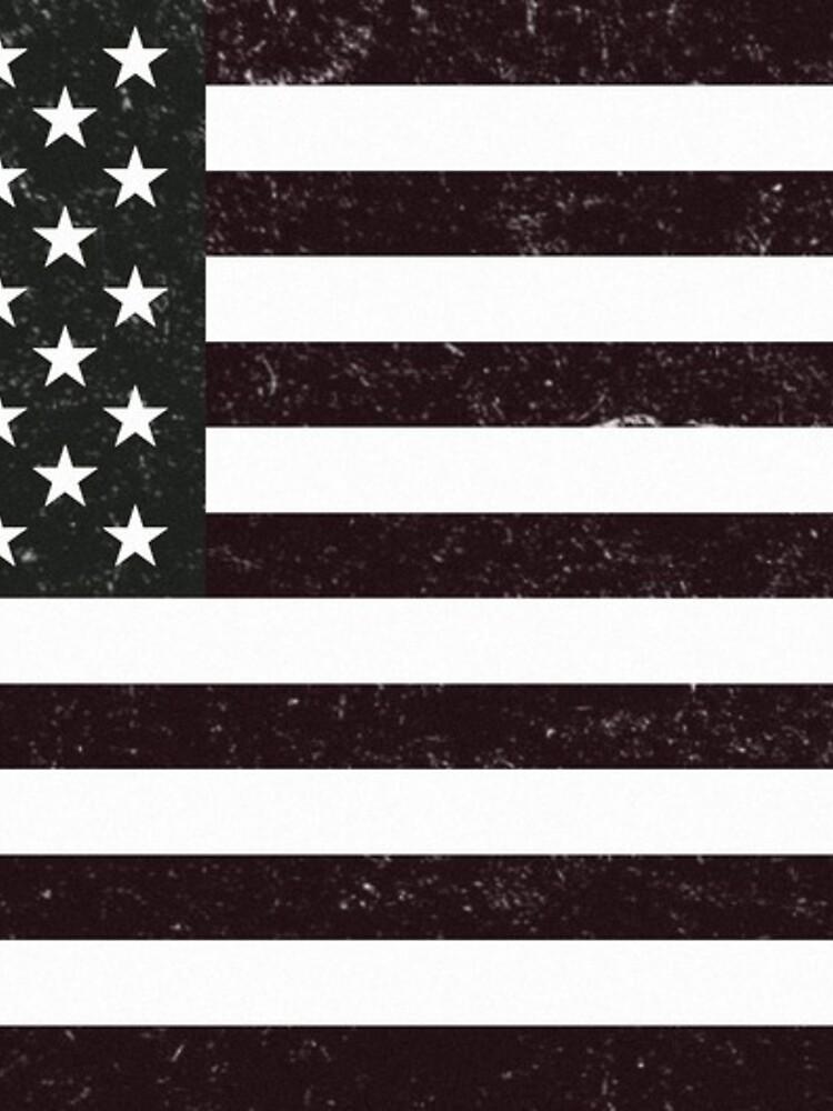 Bandera de EE.UU de diram