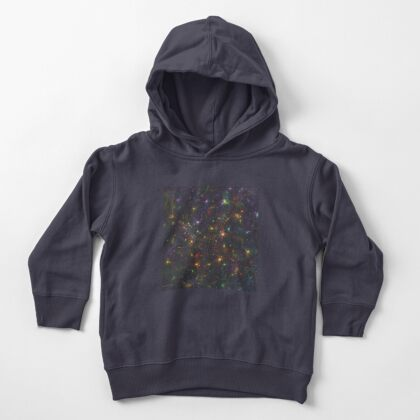 Cosmic fractals Toddler Pullover Hoodie
