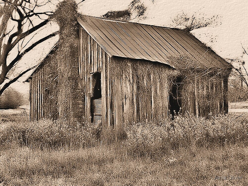 The Old Farm Hand's House by Janie Oliver