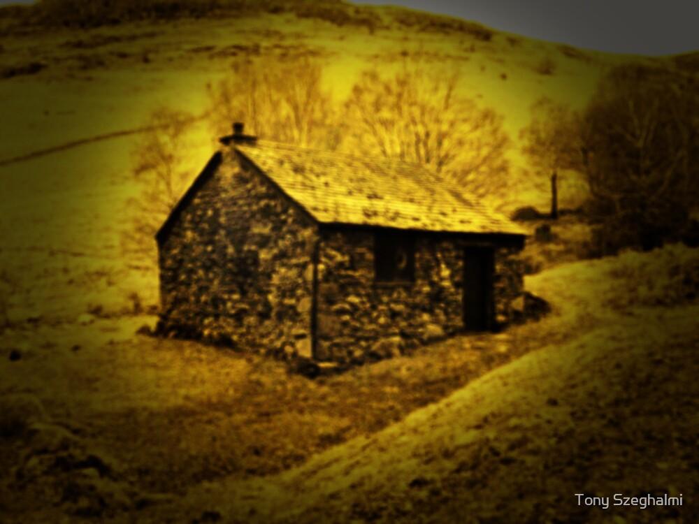 Dream Home 2 by Tony Szeghalmi