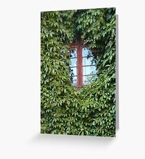 window in ivy - green nature in the city Greeting Card