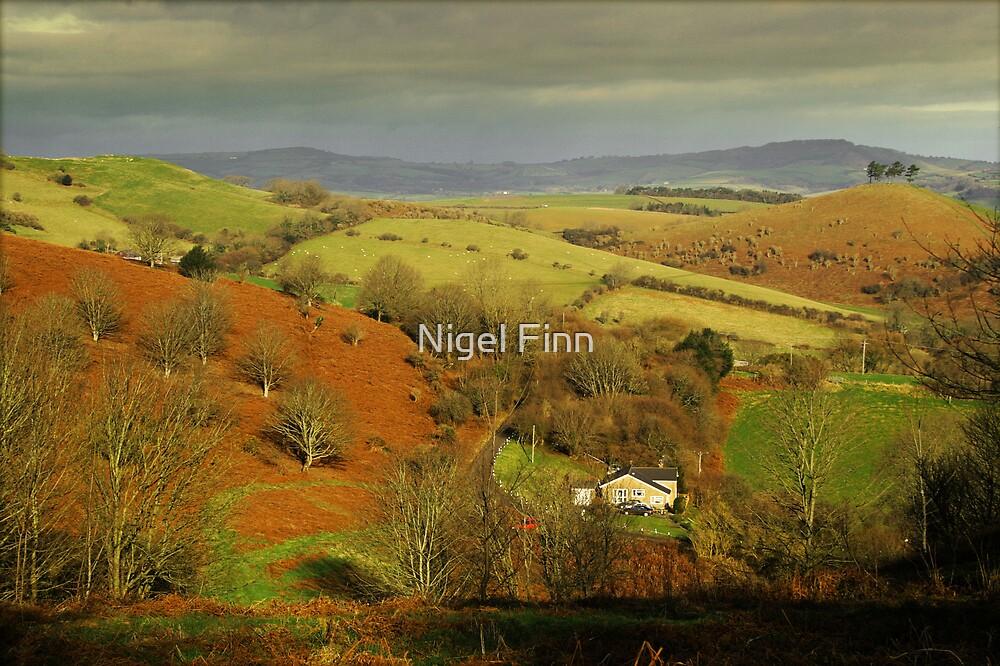 Far From The Madding Crowd by Nigel Finn