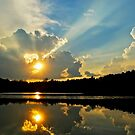 Send Out Your Ray of Sunshine... by Karen  Helgesen