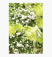 Fluorescent Green Garden Photographic Print