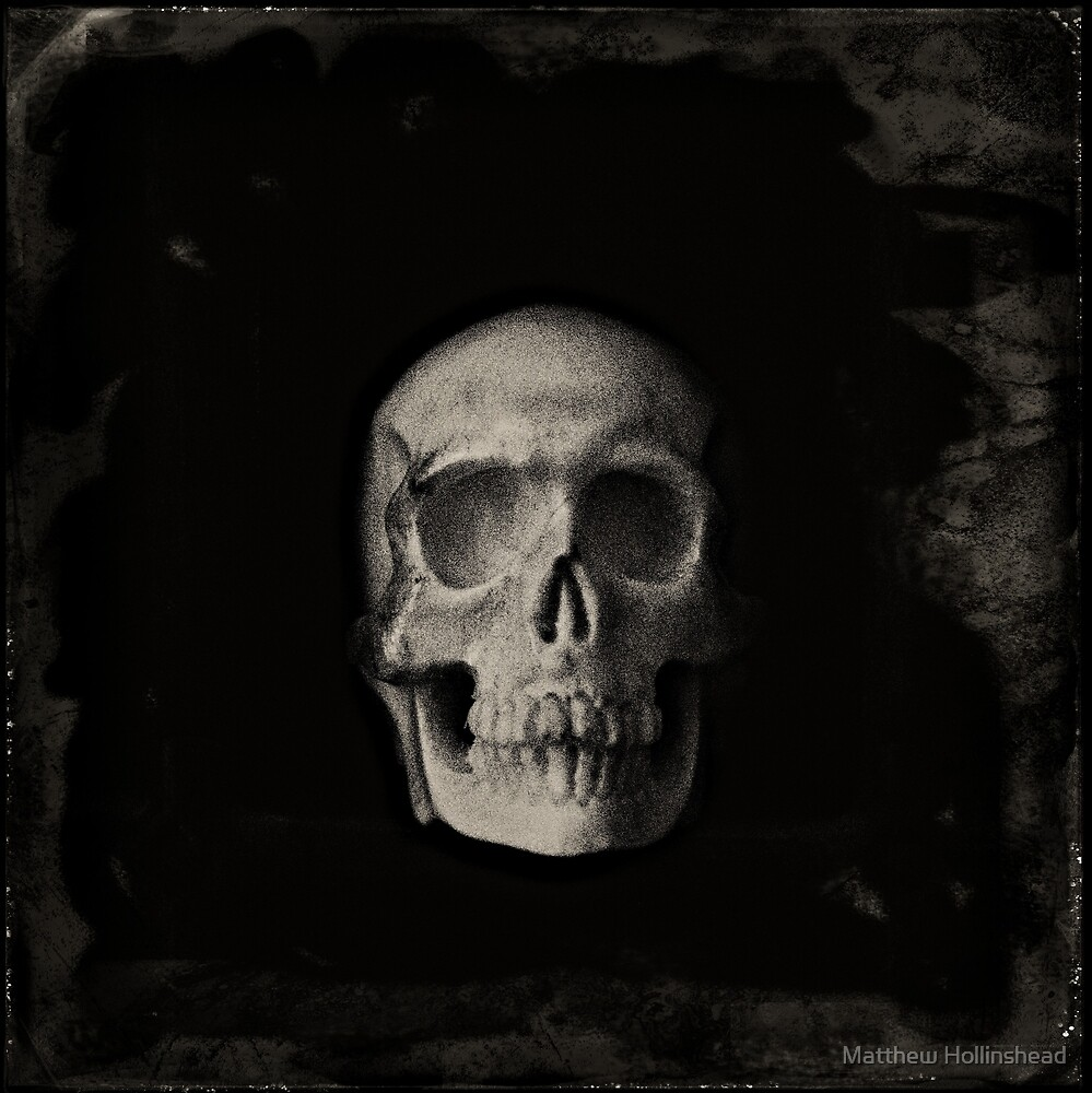 Skull by Matthew Hollinshead