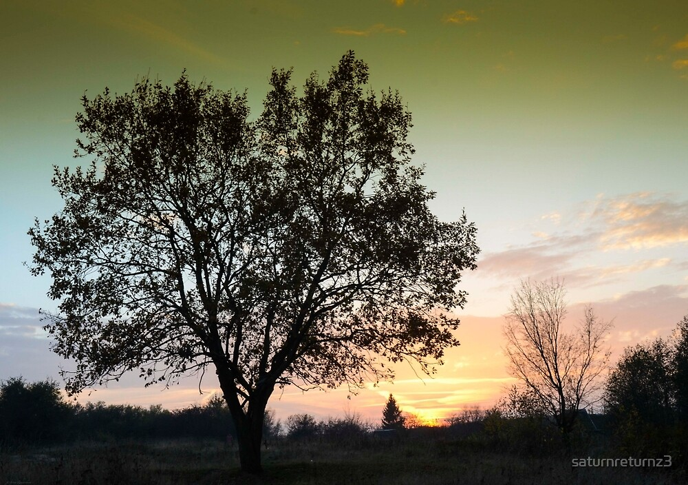 Tree of Life by saturnreturnz3