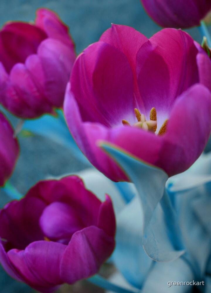 Tulip blues. by greenrockart