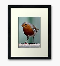 WHEN THE RED ROBIN COMES BOBBIN' ALONG (written by Harry Woods ) Framed Print