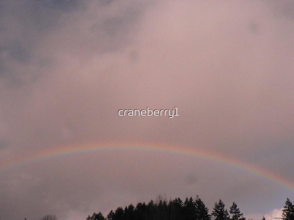 Gods' rainbow by craneberry1