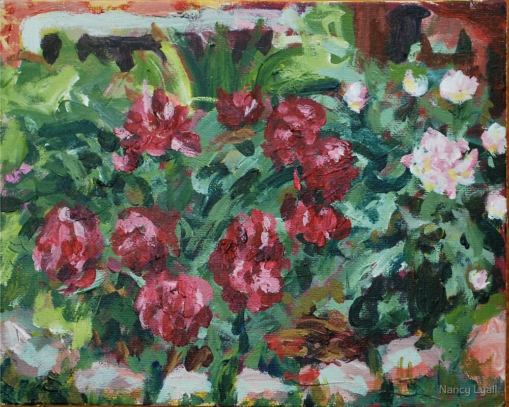 """Peonies"" by Nancy Lyall"